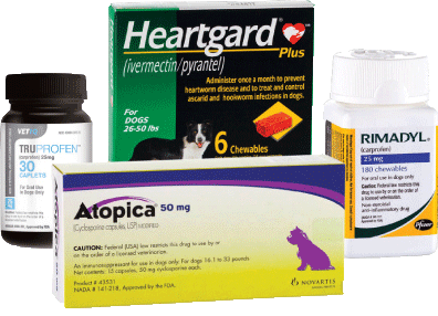 Grouping of Pet Medication